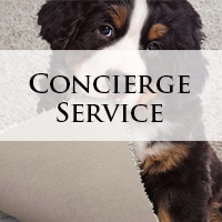 Bendele Abbey Flooring & Rug offers an exclusive concierge service.